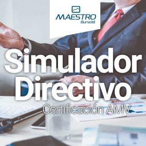 Simulador Directivo