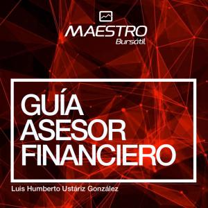 Guía Asesor Financiero