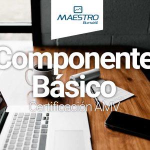 Componente-basico