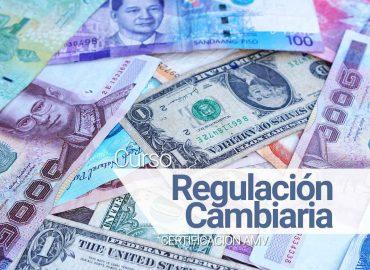 Regulacion-Cambiaria