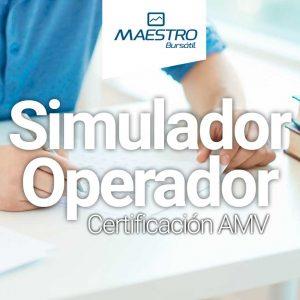 Simulador Operador